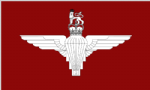 Parachute Regiment Large Flag - 5' x 3'.